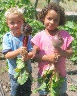Children Holding Fresh Beets in Garden