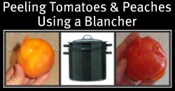 Peeling Peaches and Tomatoes Using a Blanch