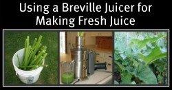 Using a Breville Juicer to make Rhubarb Juice