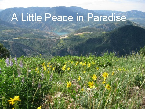 A Little Peace in Paradise