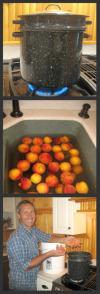 How to blanch peaches or tomatoes 1