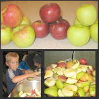 Preparing your apples for applesauce