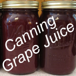 How to Make Grape Juice