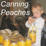 Canning Peaches Link
