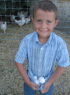 Child by Chicken Coop Holding Eggs