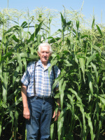 Vegetalbe Gardening - Dad Standing by Tall Corn