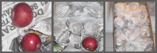 Storing Apples Collage
