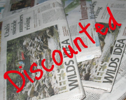 Discounted Newspaper
