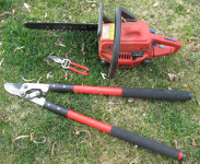 Tools for Pruning Peach Trees