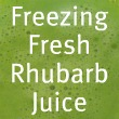 Freezing Rhubarb Juice
