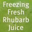 Freezing Rhubarb Juice