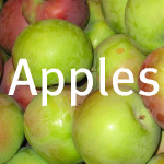 Storing Fresh Apples