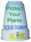Aqua Dome Link