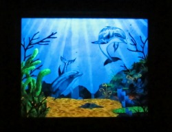 Glow in the Dark Dolphin Painting