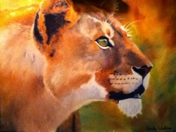 Oil Painting Adult Lioness