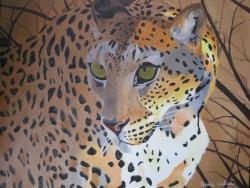 Oil Painting Leopard