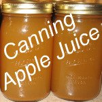Homemade Apple Juice