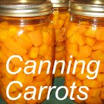 Canning Carrots Link