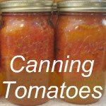 canning tomatoes link