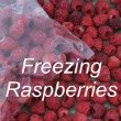 Freezing Raspberries