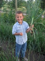 Child Holding Onion in Garden