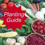 Vegetable Planting Guide Link