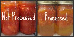 Process versus not processed tomatoes