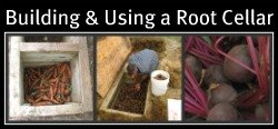 Building and Using a Root Cellar