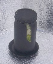 Black pained solar jar with soup in it