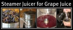 Using Steamer Juicer for Grape Juice