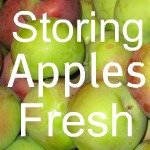 Storing Fresh Apples