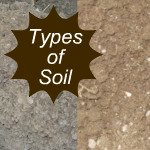 Types of Soil Link