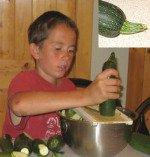 Shredding zucchini with V-Slicer