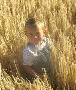 Child in Grainfield